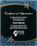 Blue Marble Shooting Star Acrylic Award Recognition Plaque Achievement Awards