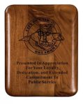 Walnut Elliptical Edge Round Corner Plaque Award Achievement Awards