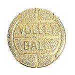 Volleyball Chenille Pin Lapel Pins