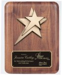 Solid American Walnut Plaque Piano Finish Plaques