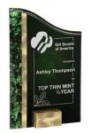 Gold/Green SunRay Award Sales Awards