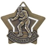 Wrestling Star Star Medal Awards
